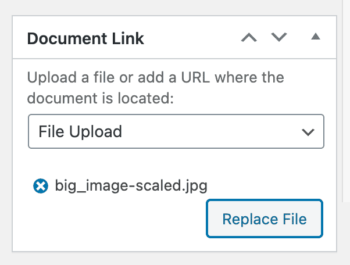 Replace document file URL