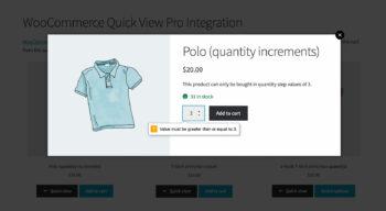 WooCommerce Quick View Pro quantity error